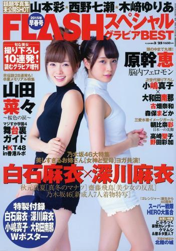 212689715_flash_magazine_special_2015_03.jpg